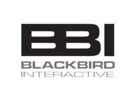 company-logo_blackbird-interactive